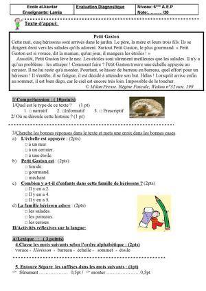 calameo evaluation diagnostique pour la eme
