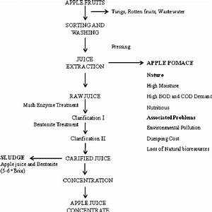 Industrial Processing Of Apple Juice Concentrate  Ajc