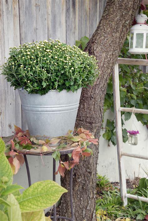 Herbstdeko Aus Dem Garten by Herbstdekoration F 252 R Hof Und Garten Depot