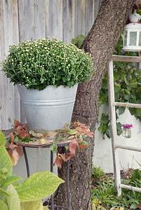 Herbstdeko Für Den Garten : herbstdekoration f r hof und garten depot blog ~ Orissabook.com Haus und Dekorationen