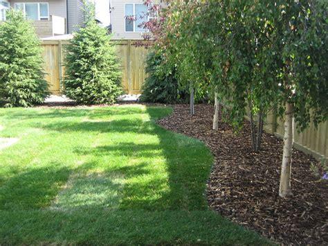 Calgary Backyard With Trees