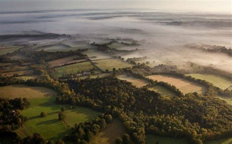 nature landscape aerial view mist forest morning