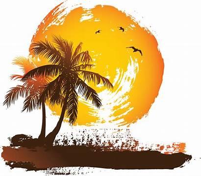 Palm Tree Cartoon Sunset Transparent Trees Sun