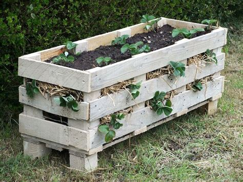 amazing diy projects  repurpose pallets  garden