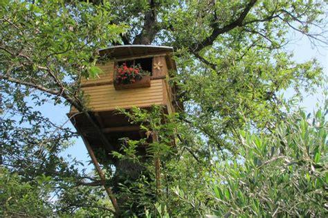 sull albero italia sull albero in italia per un week end nella natura