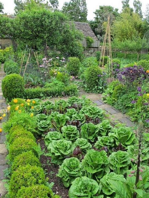 beautiful vegetable garden  ideacorationco