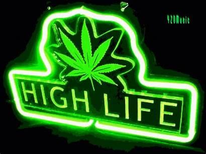 Marijuana Cannabis 420 Medical Myanimelist Profile 4i20