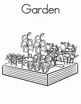 Coloring Garden Pages Vegetables sketch template