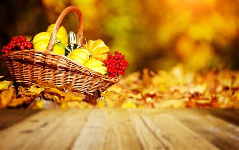 Fall Harvest Wallpaper ·① Download Free Amazing Hd