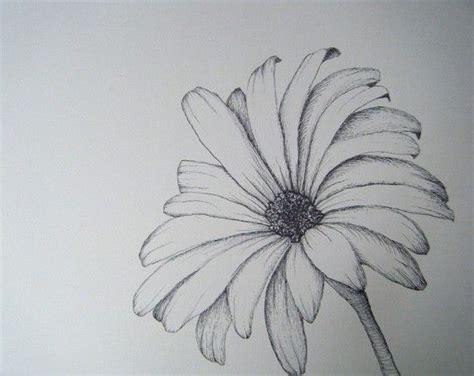 Flower Sketch Illustration Imagination Pinterest