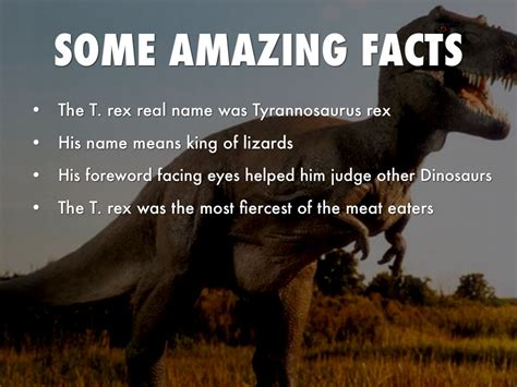 Tyrannosaurus Rex By Stephanie Rickman