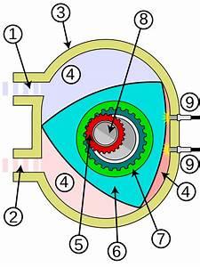File Wankel Engine Diagram Svg