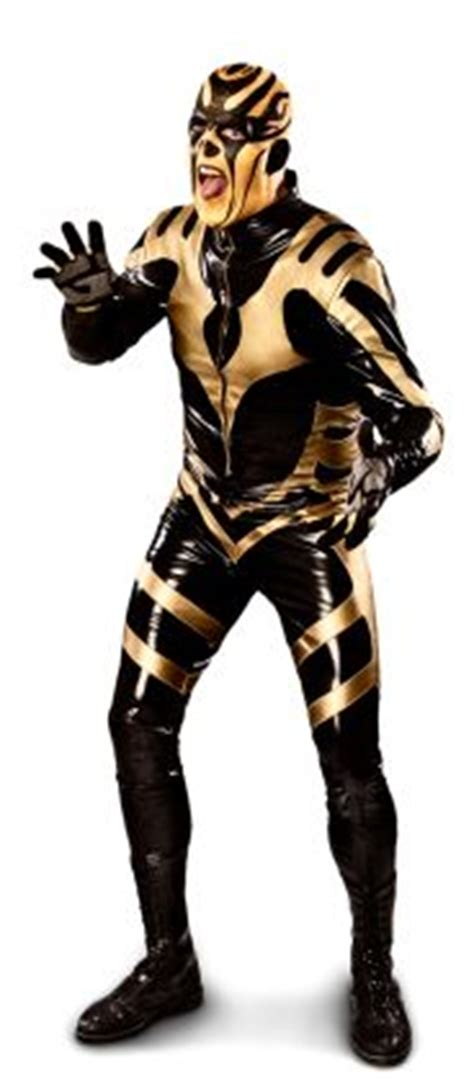 goldust curtain call 1000 images about great of pro on