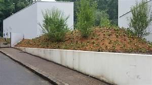 Garten Und Landschaftsbau Bochum : hsb garten und landschaftsbau in bochum ~ Frokenaadalensverden.com Haus und Dekorationen