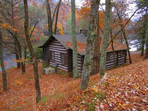 Picture Of Vogel State Park Campground