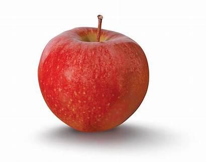 Cameo Apple Sweet Varieties