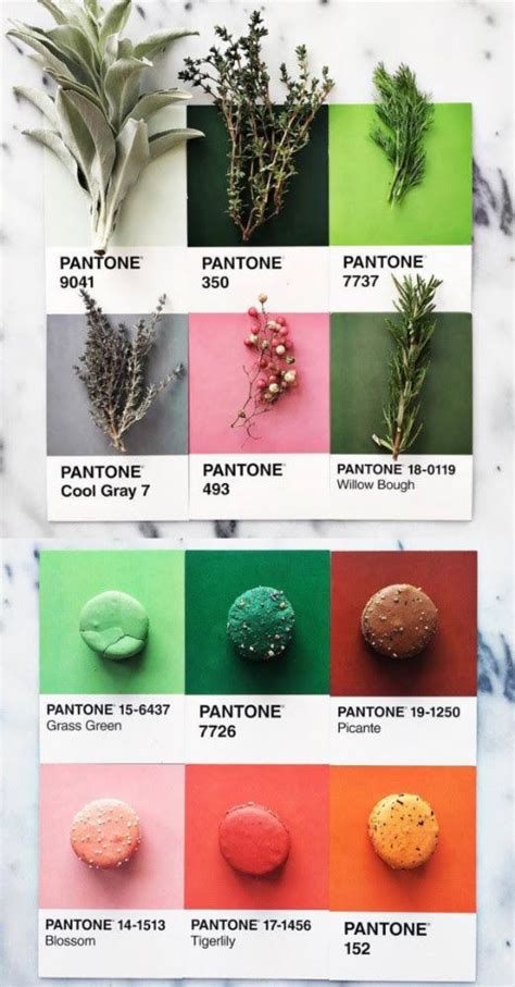 These color combination could create a beautiful color schemes, and you could use as inspiration for your design. Free printable + Etsy Award winners + The bar cart trend + 5 Fresh Scandi design brands + more ...