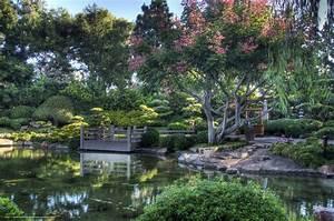 Download wallpaper japanese, Garden, pond, park free ...