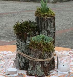 Basteln Mit ästen Und Zweigen : sukkulenten arrangement ideen tipps zur pflanzenpflege ~ Whattoseeinmadrid.com Haus und Dekorationen