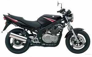 Suzuki Gs500  Gs500e 1989