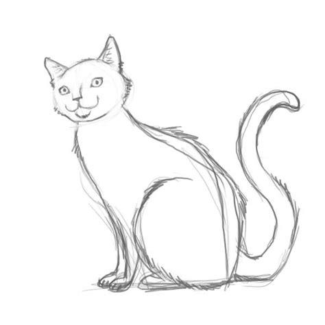 draw  warrior cat    draw  cat