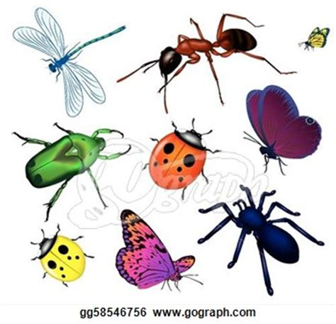 Insect Clipart Insecta Clipart Clipground