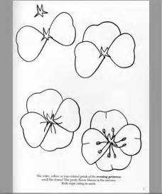 How to Draw a Flower Beginner