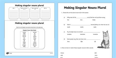 making singular nouns plural worksheet worksheet