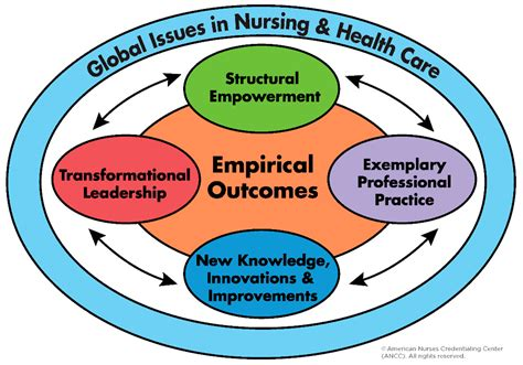 healthcare  full text measuring transformational