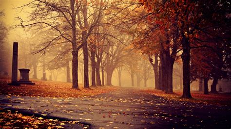 Fall Backgrounds For by Cool Fall Backgrounds 69 Images