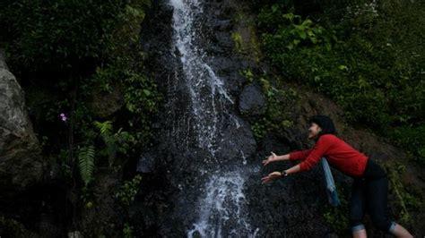 objek wisata wajib  perkebunan teh kaligua puncak sakub