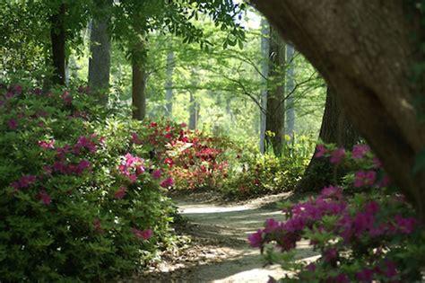 cypress gardens sc dean plantation moncks corner berkeley county