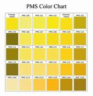 Gold Pantone PMS Color Chart