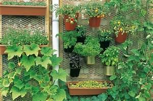 Gemüse Auf Dem Balkon : urban garden tipps und urban gardening ideas f r ~ Lizthompson.info Haus und Dekorationen