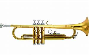 Buy Rivertone, Wind Instrument, Trumpet, Bb -Lacquered ...
