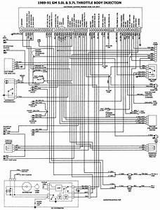 Iyectores De Tbi Chevrolet 89 V8