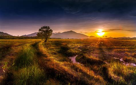natural landscape sunset trees hills grass streams