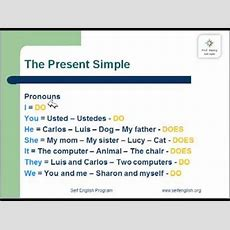 Simple Present Dodoes Youtube