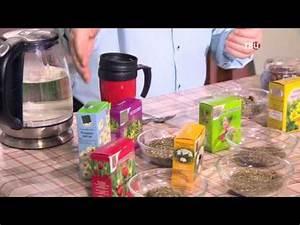 Гипертония растения снижающие давление