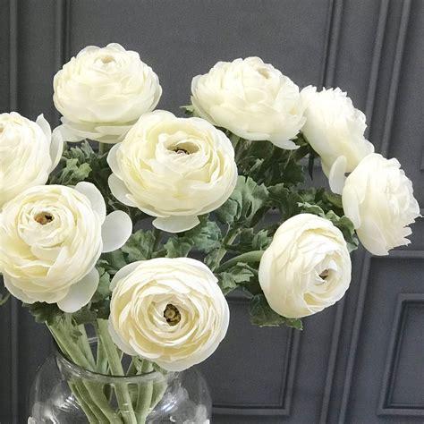 large white ranunculus flower heavenly homes gardens