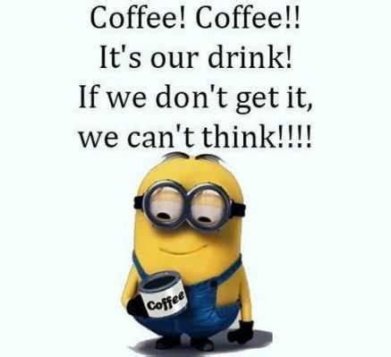 hilarious  minions memes funny   lol