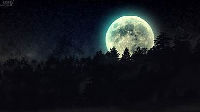 Moon Night Forest Stars Desktop Wallpapers Backgrounds