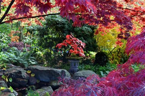 na aina botanical gardens na aina botanical