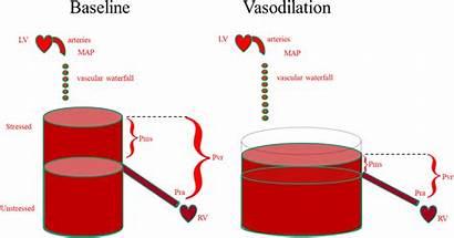 Overload Fluid Volume Pressure Circulatory Unstressed Mean
