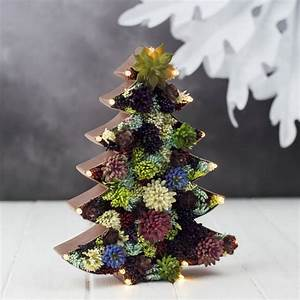 Handmade, Succulent, Christmas, Tree, Marquee, Light, By, The, White, Bulb