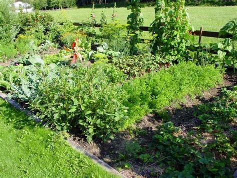 pflanzen für schattige plätze bauerngarten anlegen bepflanzen und pflegen anleitung