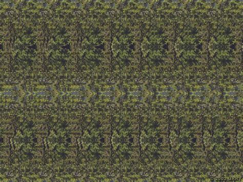 Imagenes 3D Ocultas Taringa