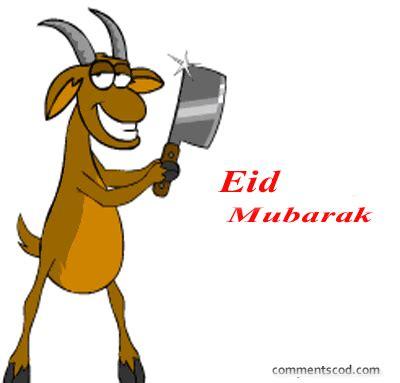 eid mubarak  images funny eid mubarak eid ul adha
