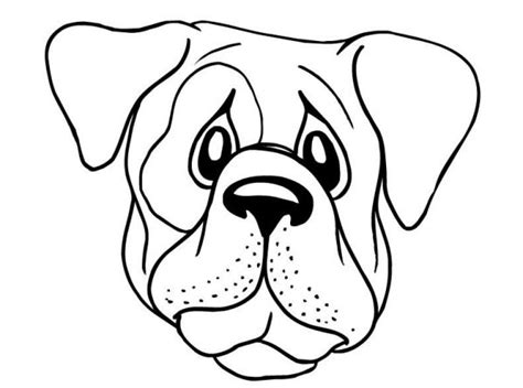dog face  drawing  getdrawings