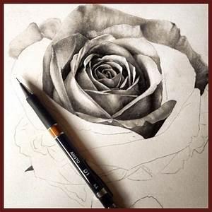 Dibujos A Lapiz De Rosas En 3d Archivos Imagenes De Rosa